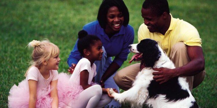 Image Souirce: dogtime.com