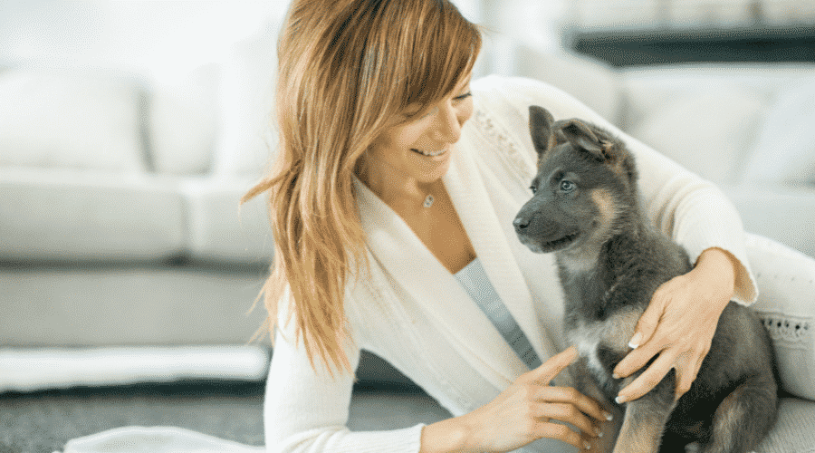 How to Survive Your Puppy's First Week